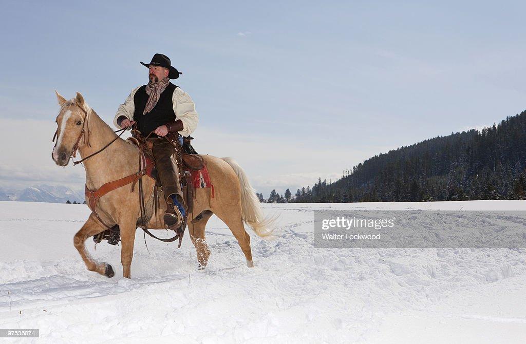 Montana Cowboys : Stock Photo
