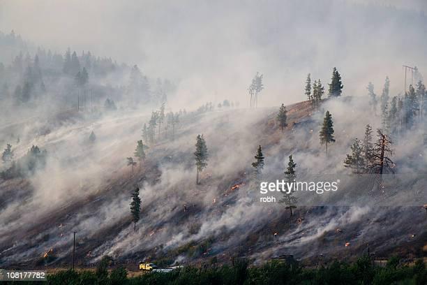 Montana Feu de forêt 2007 [ 2 Millionth ] iStock
