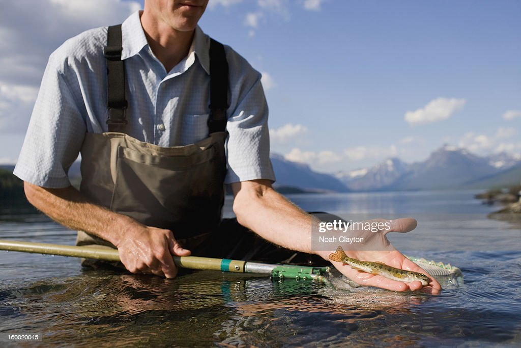 USA, Montana, Glacier National Park, Lake McDonald, Man holding juvenile western cutthroat trout : Stock Photo