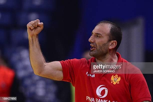 Montenegro's coach Dragan Adzic celebrates his team's victory at the end of the 2012 EHF European Women's Handball Championship final match Norway vs...