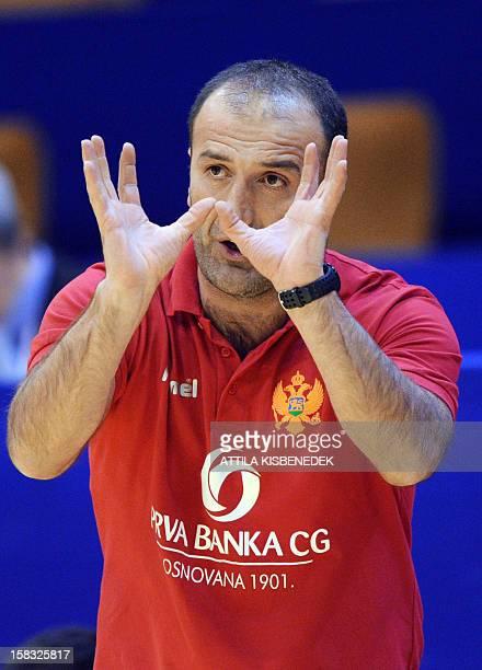 Montenegro's coach Dragan Adzic gestures during the 2012 EHF European Women's Handball Championship Group II main round match against Spain on...
