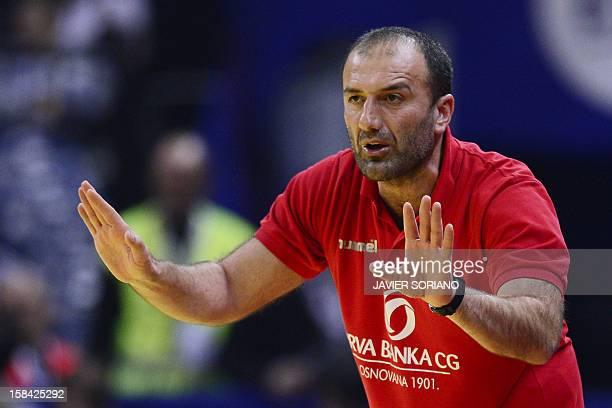 Montenegro's coach Dragan Adzic gestures during the 2012 EHF European Women's Handball Championship final match between Montenegro and Norway on...