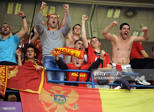 Montenegro's fans cheer their team during the 2012 EHF European Women's Handball Championship final match against Norway on December 16 at the...