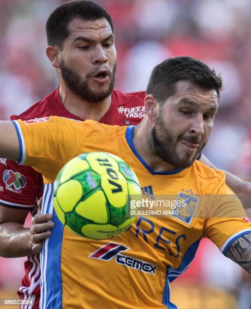 Monterrey`s Tigres AndrePierre Gignac vies for the ball with Tijuana`s Hiram Munoz during their Mexican Clausura 2017 Tournament second leg semifinal...