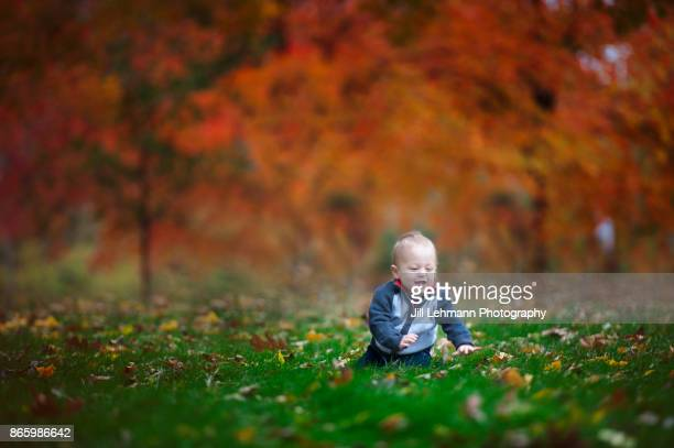 15 Month Old Fraternal Twin Crawls In the Leaves with a striking Autumn Background