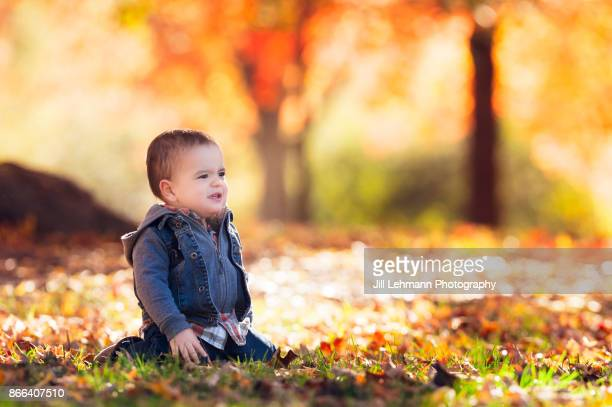 15 Month Old Fraternal Twin Sits In the Leaves with a striking Autumn Background