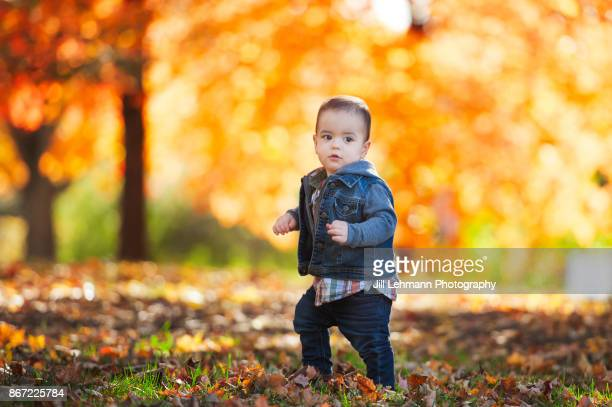 15 Month Old Fraternal Twin Walks In the Leaves with a striking Autumn Background