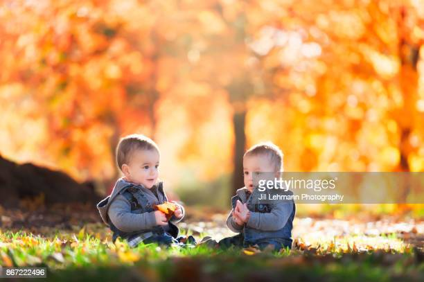 15 Month Old Fraternal Twins Play Together on an Autumn Day
