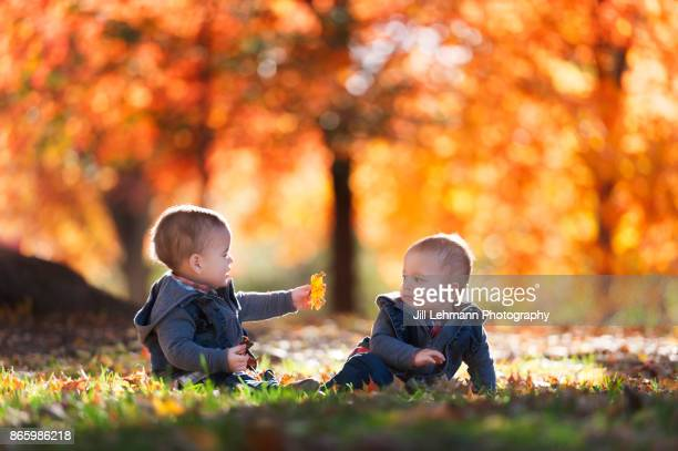 15 Month Old Fraternal Twins Play Together with One Boy Attempting to Hand Another a Leaf