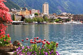 A beautiful spring landscape with flowers, Lake Geneva and view of Montreux, Switzerland.