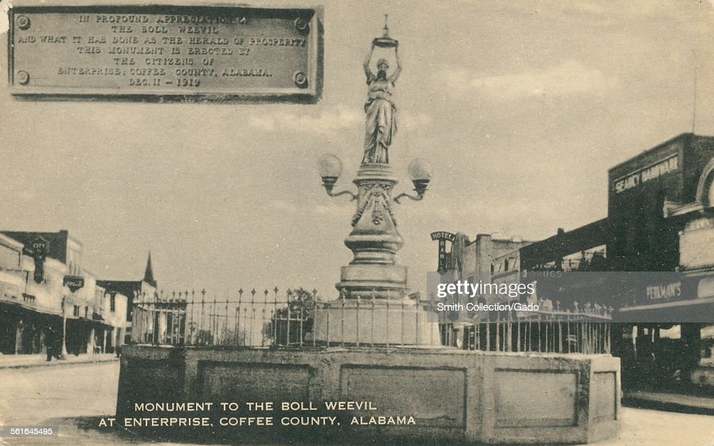 Monument To the Boll Weevil At Enterprise Coffee County Alabama 1919