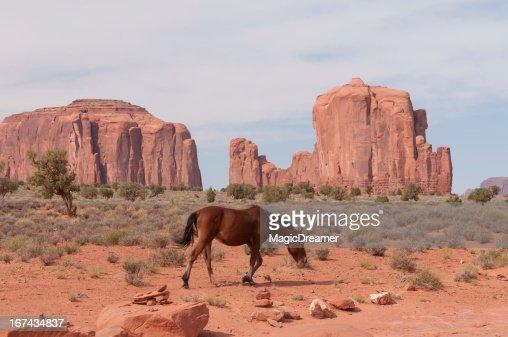 Monument Valley Navajo Tribal Park : Stock Photo
