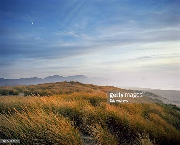 Moonrise over the beach dunes