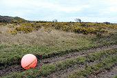 Mooring buoy washed up the coastline of the Isle of Bute.