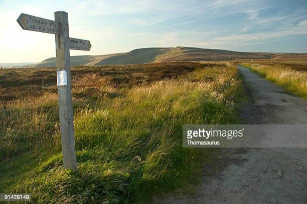 Moorland wooden signpost in grassy field