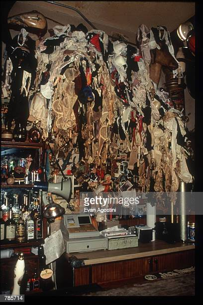 A moosehead festooned with brassieres hangs in the Hogs and Heifers saloon December 9 1996 in New York City Penthouse Pet Natalie Smith continued the...