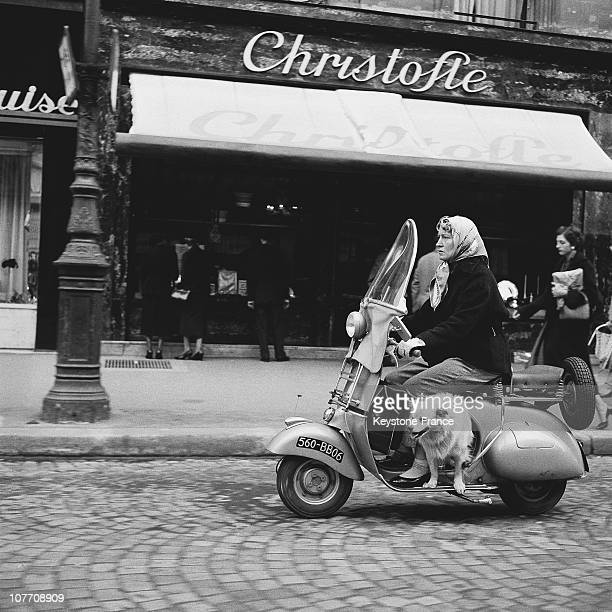 Moped Driver And His Dog On A Vespa Scooter Rue Royale In 1954 A Woman With Her Dog Cyclomotorist Vespa Scooter Was The Rue Royale Is In 1954