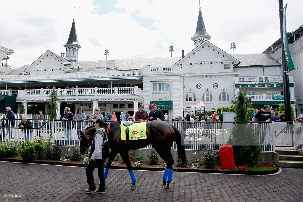 Mor Spirit is schooled in the paddock for the Kentucky Derby at Churchill Downs on May 03, 2016 in Louisville, Kentucky.