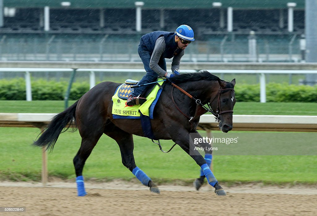 Mor Spirit runs on the track during the Morning training for the 2016 Kentucky Derby at Churchill Downs on April 30, 2016 in Louisville, Kentucky.