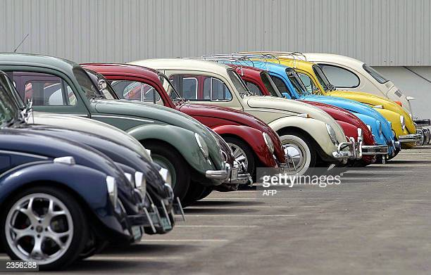 More than 140 Volkswagen Beetle were gathered to participate in an exhibition at the factory in Puebla Mexico 01 August 2003 Volkswagen said that the...