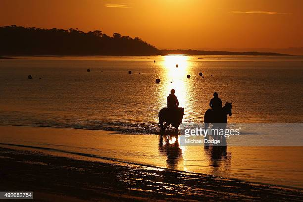 Morgan Wood on Wolfpack and Mel Bullard on Eminent Domain walk through the water at Balnarring Beach on October 15 2015 in Melbourne Australia...
