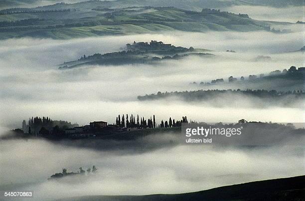 Morgendämmerung bei Montalcino 1996