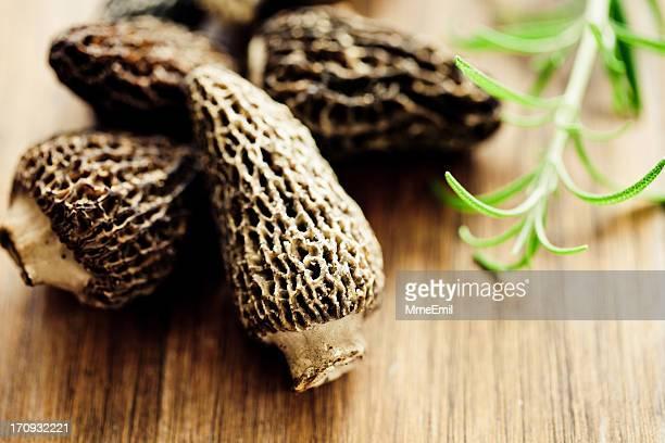Morille Morilles ou champignons