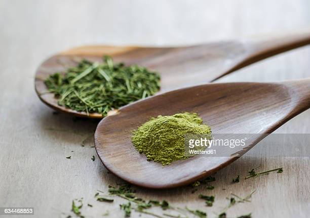 Moringa oleifera, powder and chopped leaves on wooden spoons