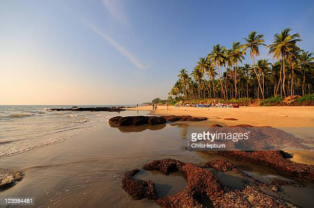 Morjim Beach, Goa, India