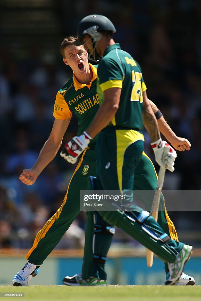 <a gi-track='captionPersonalityLinkClicked' href=/galleries/search?phrase=Morne+Morkel&family=editorial&specificpeople=4064354 ng-click='$event.stopPropagation()'>Morne Morkel</a> of South Africa celebrates after dismissing <a gi-track='captionPersonalityLinkClicked' href=/galleries/search?phrase=Mitchell+Johnson+-+Cricket+Player&family=editorial&specificpeople=665783 ng-click='$event.stopPropagation()'>Mitchell Johnson</a> of Australia during the One Day International match between Australia and South Africa at the WACA on November 16, 2014 in Perth, Australia.