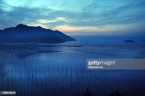 Morning blue on Mudflats