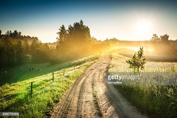 Morgen Country Road bis Foggy Landschaft mit bunten Sunrise