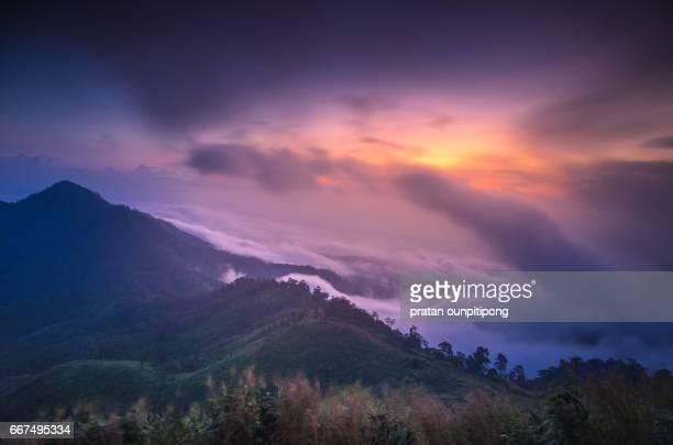 Morning fog and sunrise