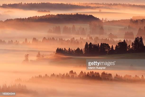 Morning fog seen from Auerberg (mountain) .