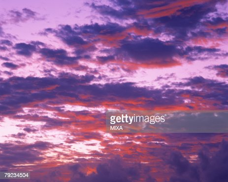 Morning Glow : Stock Photo
