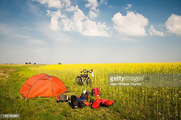 Morning in Hungarian plain