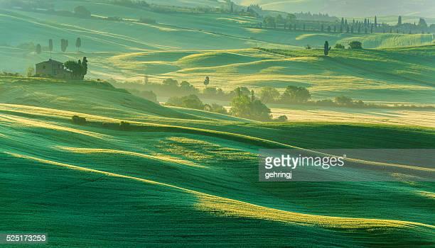 Matin paysage de la Toscane