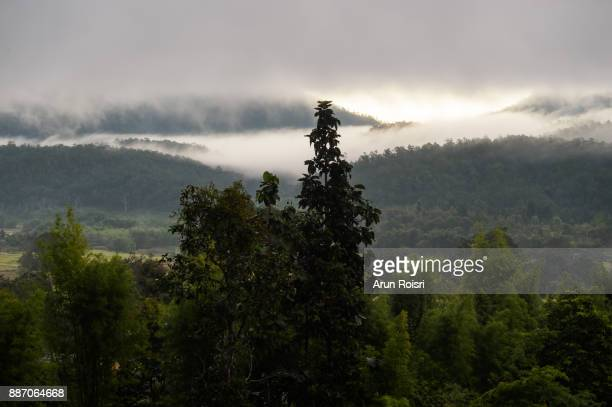 Morning mountain landscape at Muang Pon, Mae Hong Son province, Northern Thailand. Waves of clouds in the background peaks covered with coniferous deciduous forests
