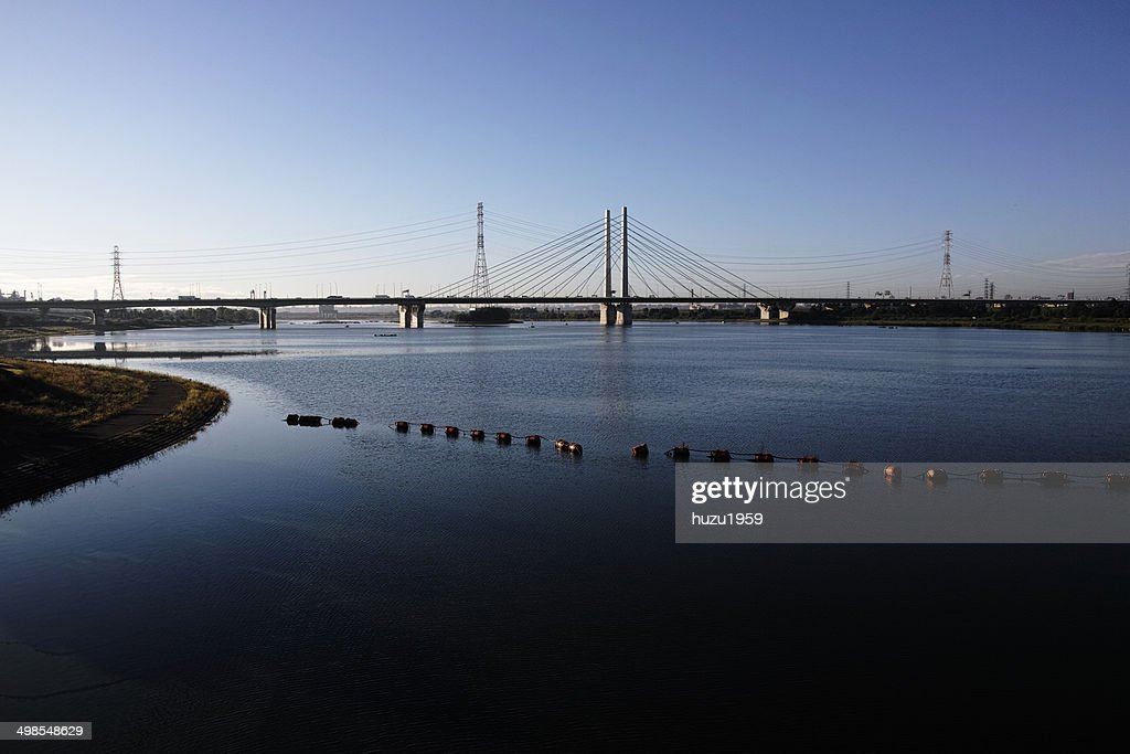 Morning of Lake and Cable-stayed bridge