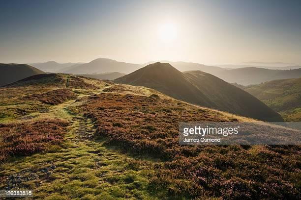 Morning on The Long Mynd, Shropshire, England, UK