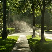 Sunbeams illuminate the spray of water sprinklers above a suburban sidewalk in Clear Lake City, Houston, Texas.