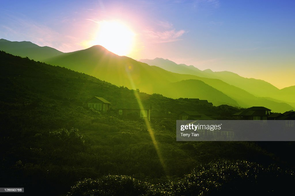Morning sunset at green field : Stock Photo