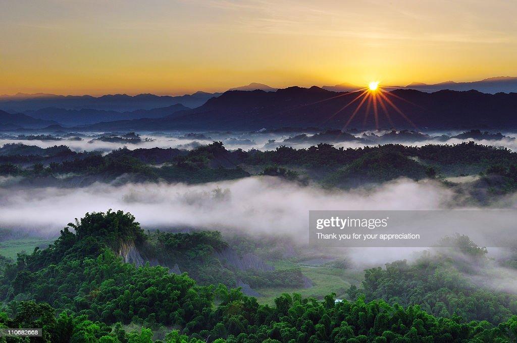 Morning Sunshine : Stock Photo
