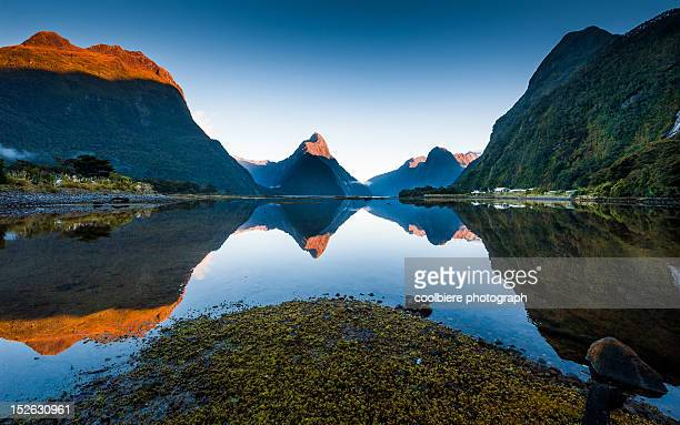 Morning view of Milford sound with reflection