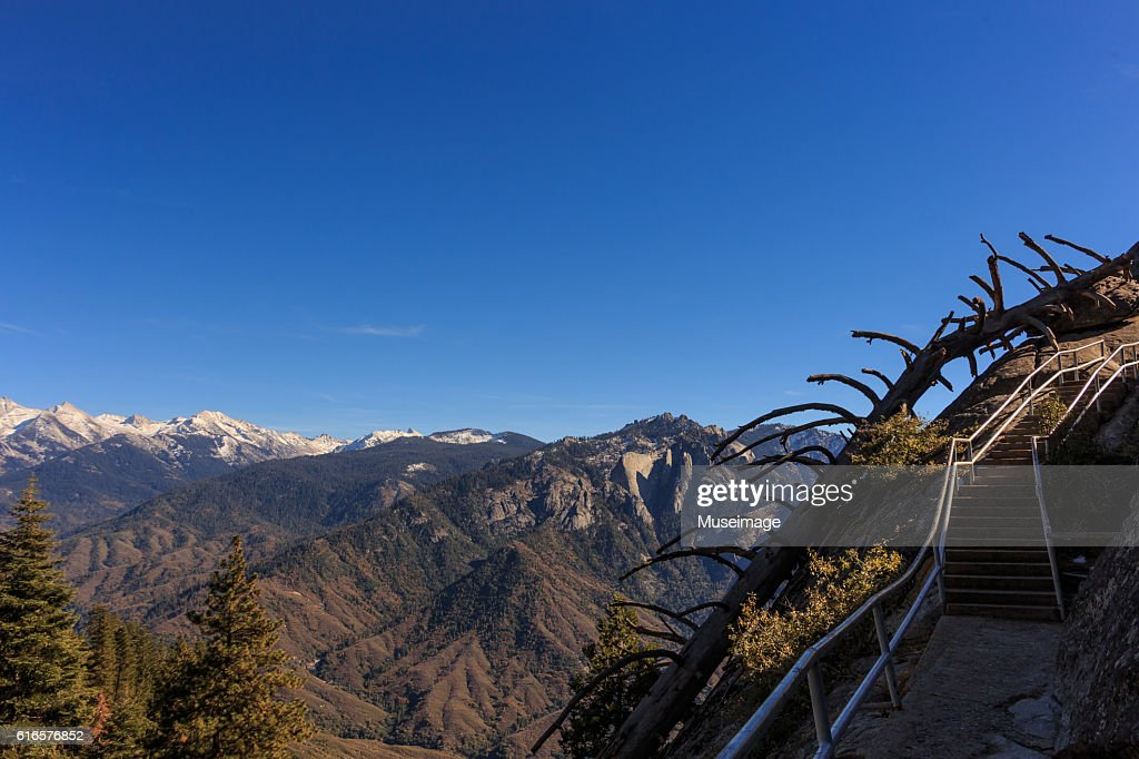 Moro Rock Stairway of Sequoia National park : Stock Photo