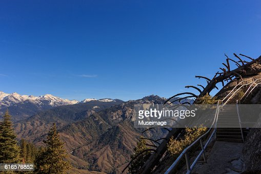 Moro Rock Stairway of Sequoia National park : Stock Photo