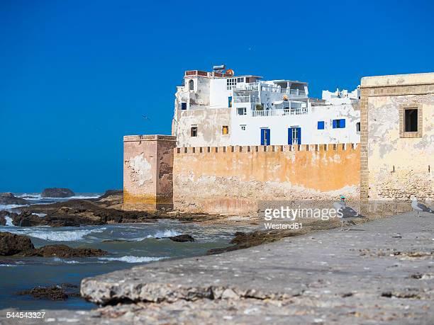 Morocco, Essaouira, Sqala de la Kasbah, Malecon
