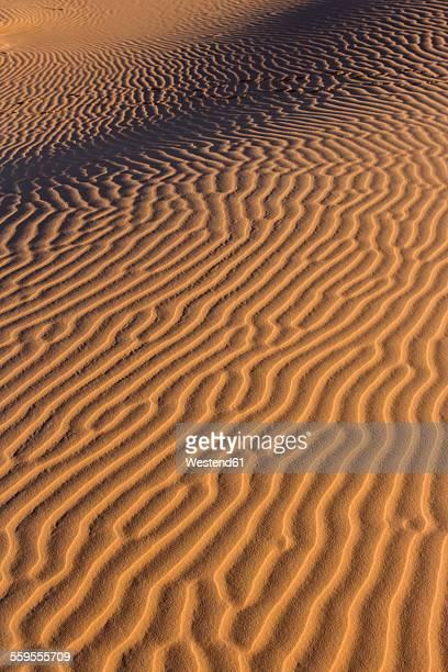 Morocco, Sahara, Erg Chebbi, pattern on desert dune