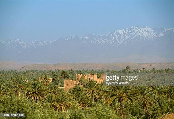 Morocco, Skoura, casbah in oasis with Atlas Mountains in background