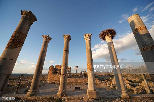 Morocco, Volubilis, Columns of the Capitol